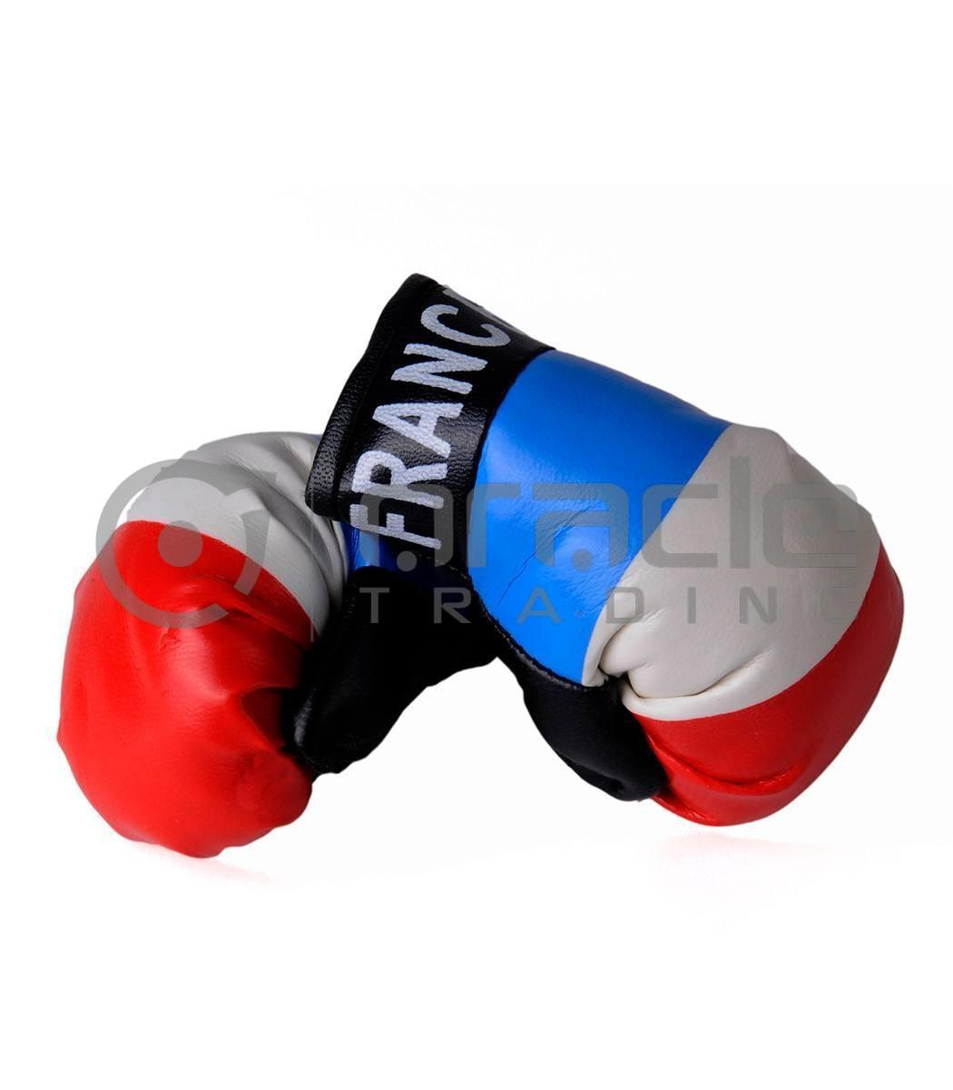 France Boxing Gloves